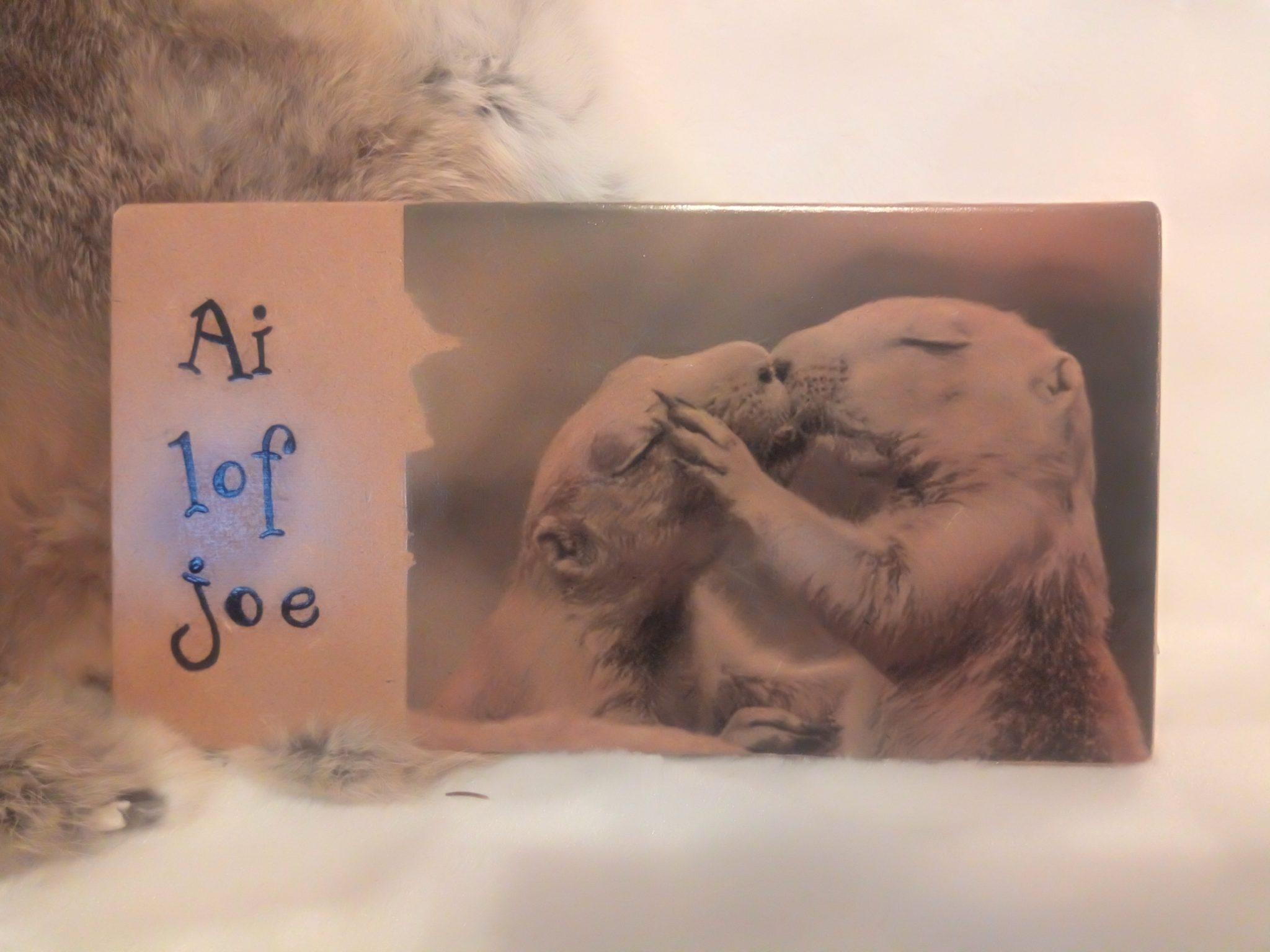 Deco-bordje: Grondeekhoorntjes - Ai lof joe