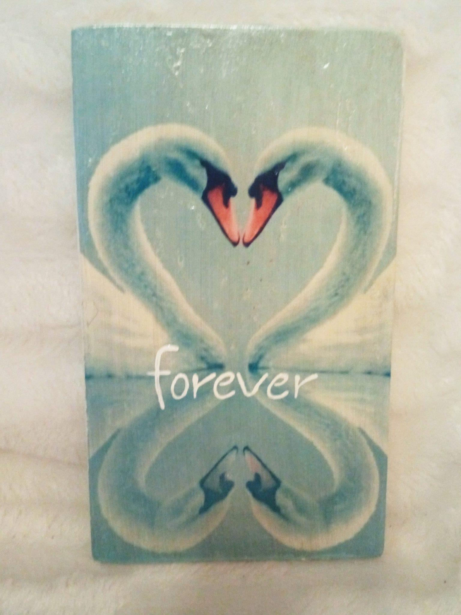 Deco-bordje: Zwanen - Forever