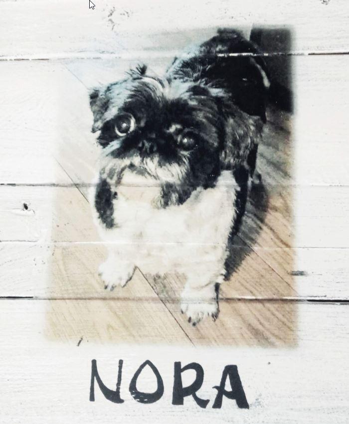 """Deco-bord van pallethout met foto hond """"Nora"""" , naam eronder geschilderd"""